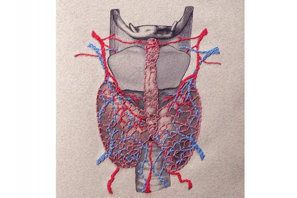 Thyroid Gland Journal by Fabulous Cat Papers