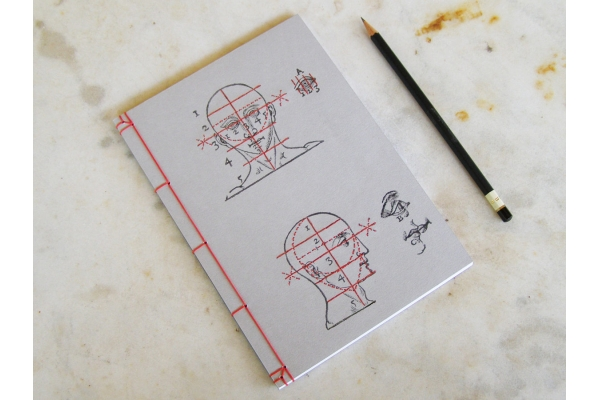 Proportions and Measures of the Head by Fabulous Cat Papers