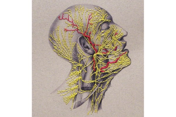 Nervous System of the Head. Paper Embroidery by Fabulous Cat Papers