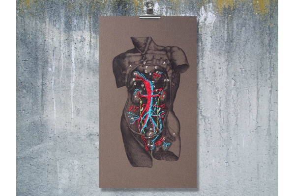 Dissection of a Male Torso. Paper Embroidery by Fabulous Cat Papers