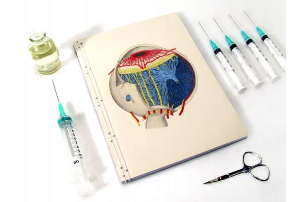 Anatomical Eye Journal by Fabulous Cat Papers