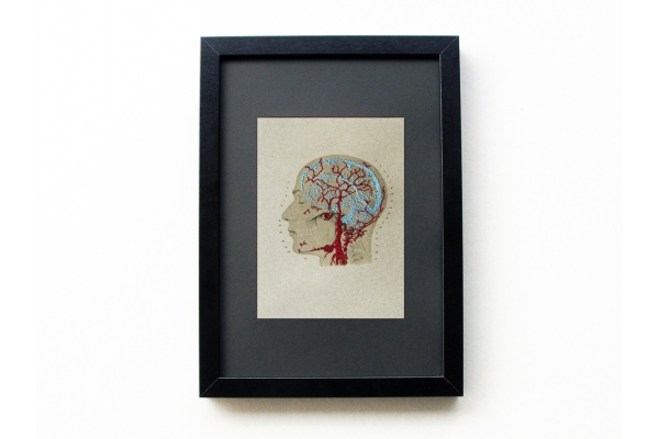 rain Anatomy Art. Veins and Arteries of the Head by Fabulous Cat Papers