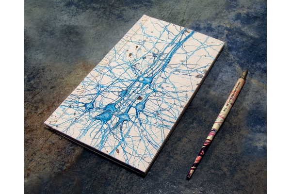 Neurons Journal. Studie No2 by Fabulous Cat Papers