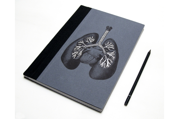 Lungs Anatomy Book by Fabulous Cat Papers