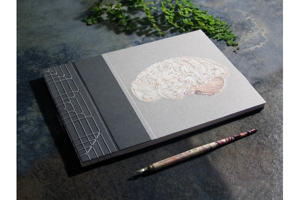 Brain Book by Fabulous Cat Papers
