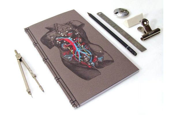Dissection of a Male Torso Journal by Fabulous Cat Papers