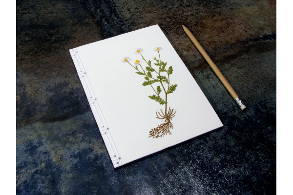 Chamomiles. Botanical Journal by Fabulous Cat Papers