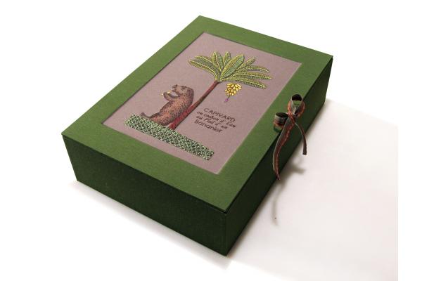 Capivara Box by Fabulous Cat Papers