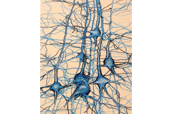 Neurons Journal. Study No1 by Fabulous Cat Papers