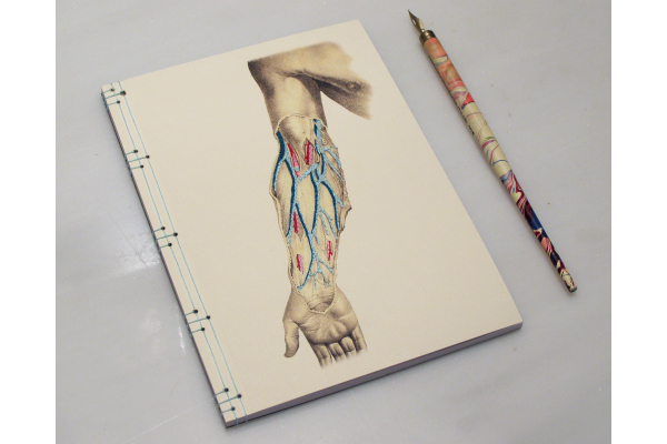 Arm Anatomy Journal by Fabulous Cat Papers