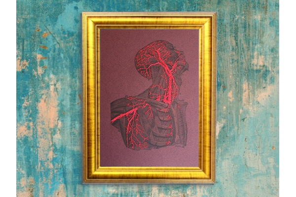 Torso & Head Anatomy. Paper Embroidery by Fabulous Cat Papers