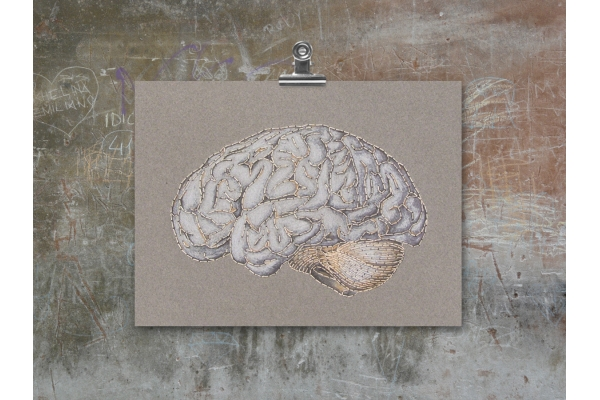 Anatomical Brain. Paper Embroidery by Fabulous Cat Papers