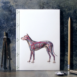 Dog Anatomy Journal by Fabulous Cat Papers