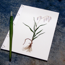 Dragonfly Journal by Fabulous Cat Papers