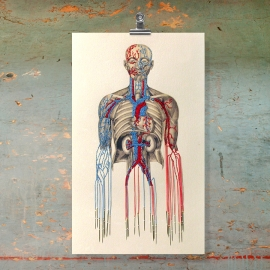 Bleeding by Needles