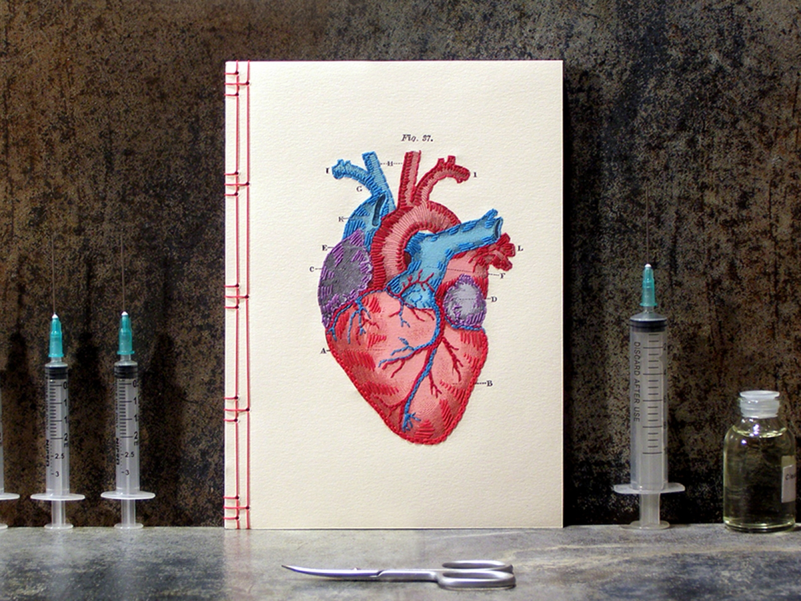 Heart Anatomy Journal by Fabulous Cat Papers | FabulousCatPapers