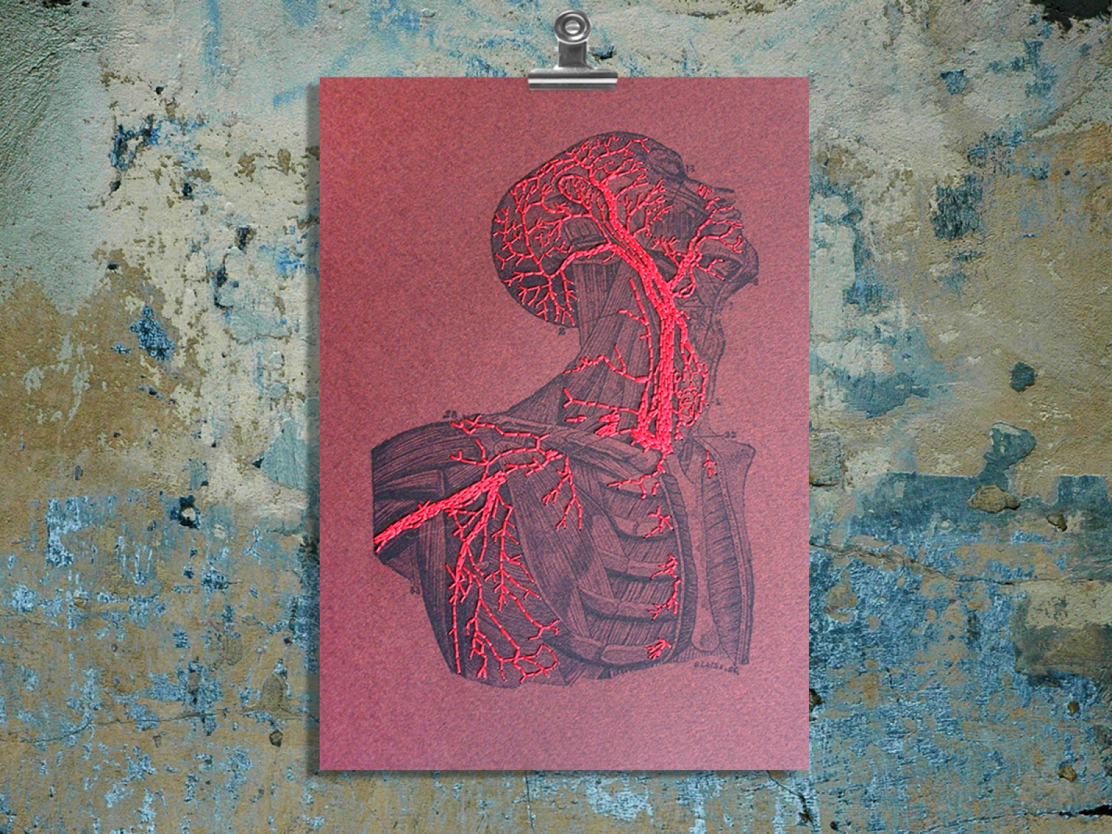 Torso & Head Anatomy. Paper Embroidery by Fabulous Cat Papers ...