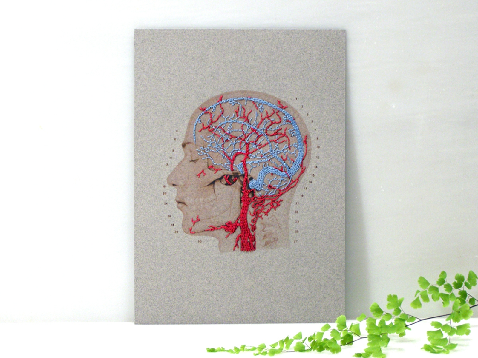 Brain Anatomy Art. Paper Embroidery by Fabulous Cat Papers ...