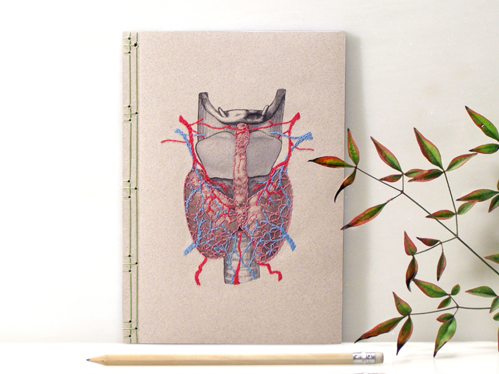 Thyroid Gland Journal By Fabulous Cat Papers Fabulouscatpapers