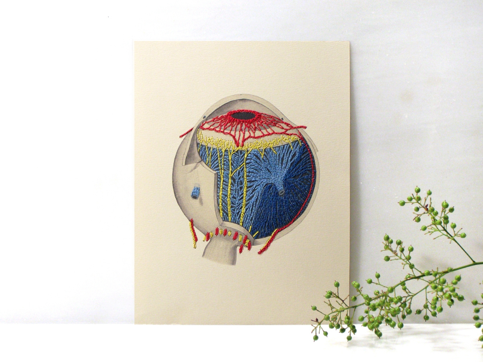 Anatomical Eye. Paper Embroidery by Fabulous Cat Papers ...