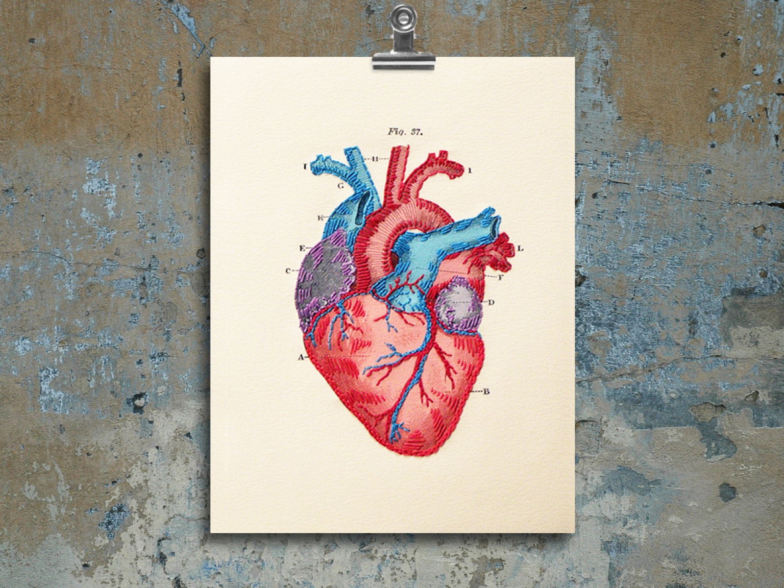 Anatomical Heart Paper Embroidery By Fabulous Cat Papers