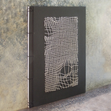 Disturbed Mesh Journal