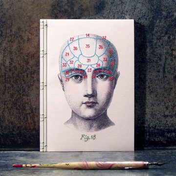 Phrenology Journal