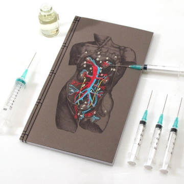 Dissection of a Male Torso Journal
